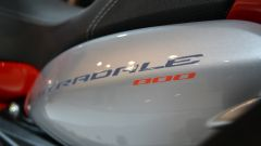 MV Agusta Stradale 800 - Immagine: 19