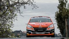 Nicelli - Peugeot Competition 208 Rally Cup Top