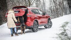 Nissan X-Trail Trainer: il contest dedicato all'allestimento per Fido - Immagine: 6