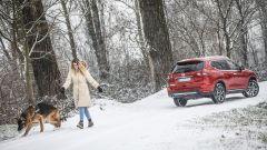 Nissan X-Trail Trainer: il contest dedicato all'allestimento per Fido - Immagine: 4