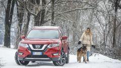 Nissan X-Trail Trainer: il contest dedicato all'allestimento per Fido - Immagine: 5