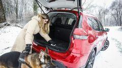 Nissan X-Trail Trainer: il contest dedicato all'allestimento per Fido - Immagine: 11