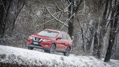 Nissan X-Trail Trainer: il contest dedicato all'allestimento per Fido - Immagine: 39