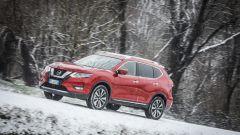 Nissan X-Trail Trainer: il contest dedicato all'allestimento per Fido - Immagine: 40