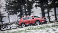 Nissan X-Trail Trainer: il contest dedicato all'allestimento per Fido - Immagine: 42