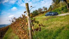 Nuova BMW Serie 4 Coupé tra i vitigni