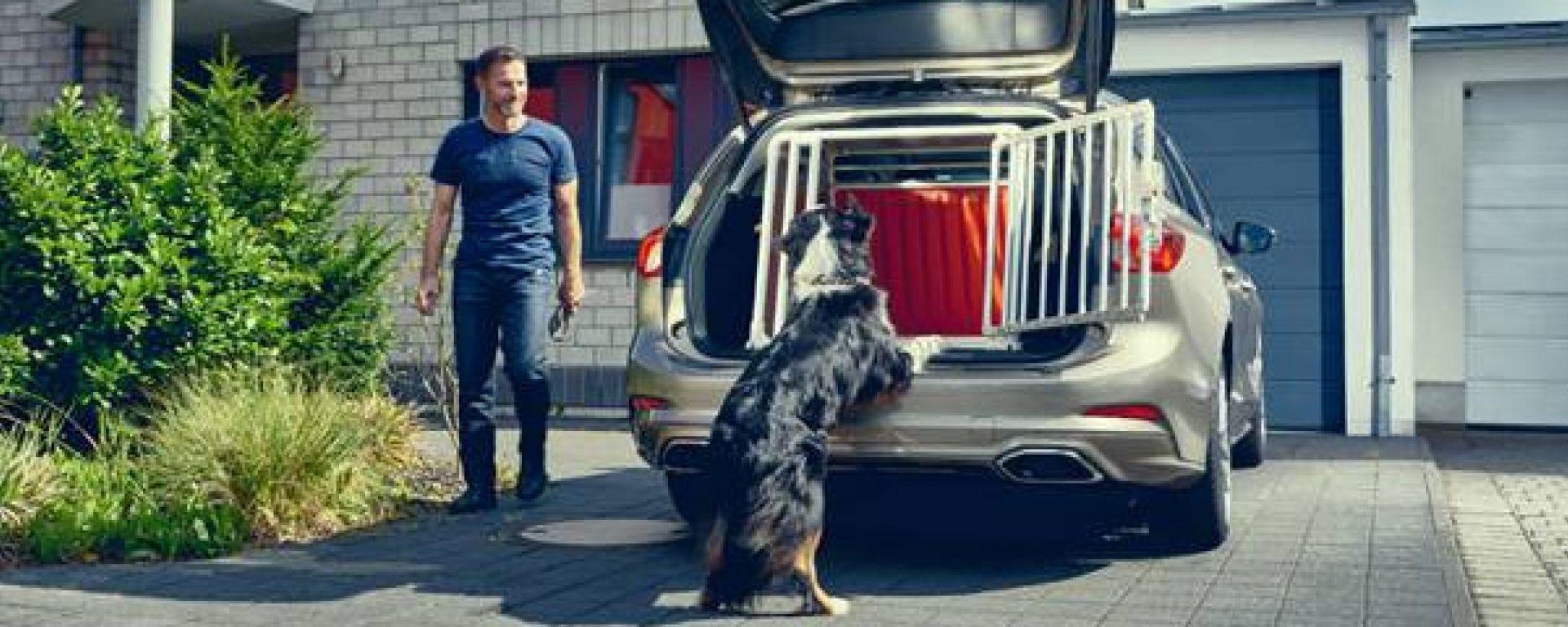 Nuova Ford Focus wagon: a prova di amici a quattro zampe