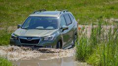 Nuova Subaru Forester e-Boxer, l'ibrida da off-road. Il test - Immagine: 19