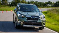 Nuova Subaru Forester e-Boxer, l'ibrida da off-road. Il test - Immagine: 30