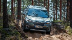 Nuova Subaru Forester e-Boxer, l'ibrida da off-road. Il test - Immagine: 33