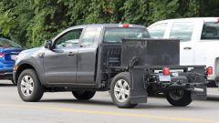 Nuovo Ford Ranger 2019, spiata la versione Single Cab - Immagine: 10