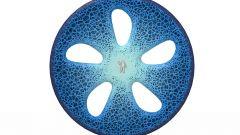Michelin Primacy 4, vive più a lungo e non teme il bagnato - Immagine: 13