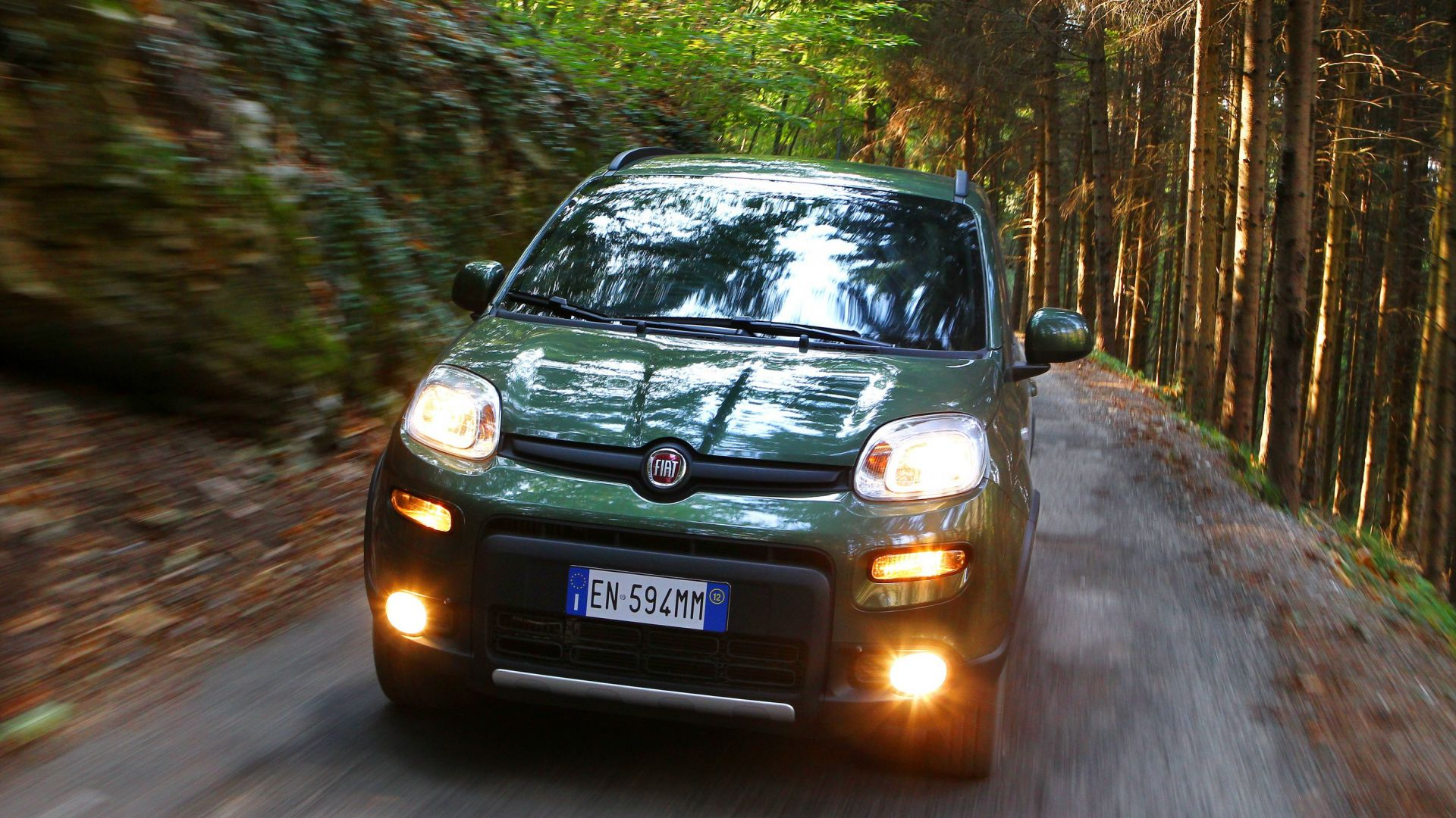 Immagine 6: Fiat Panda 4x4