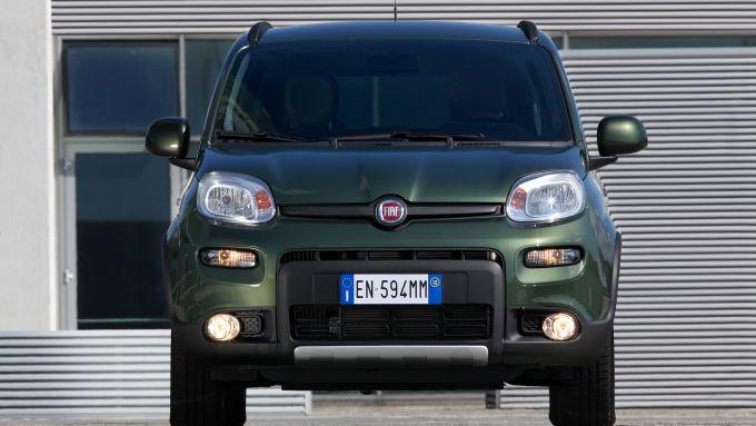 Immagine 18: Fiat Panda 4x4