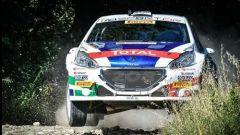 """Andreucci prima del Rally Adriatico:""""La Peugeot è l'auto da battere!"""""""