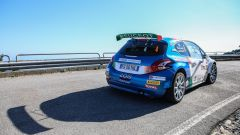 Paolo Andreucci e Anna Andreussi - Peugeot 208 T16