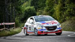 Perosino - Peugeot Competition 208 Rally Cup Top