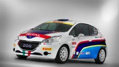 Peugeot: i programmi sportivi 2015 - Immagine: 13