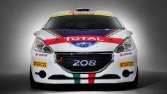 Peugeot: i programmi sportivi 2015 - Immagine: 12