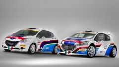 Peugeot: i programmi sportivi 2015 - Immagine: 3