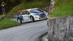 Peugeot 206 - Rally Friuli Venezia Giulia