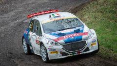 Peugeot 208 - Andreucci