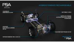 Peugeot, Citroën e DS: così saranno le ibride e le elettriche del futuro - Immagine: 6