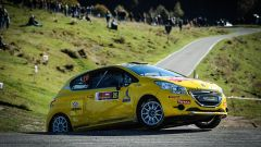 Peugeot Competition 208 Cup 2016
