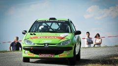Peugeot Competition - Gianluigi Cogo