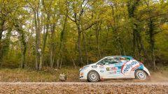 Peugeot Competition Raceday, il trofeo promozionale di Peugeot Italia