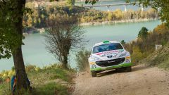Peugeot Competition Raceday Rally Terra