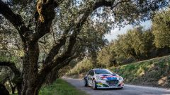 Peugeot conquista il Rally Due Valli 2018: ecco la gallery della festa - Immagine: 9