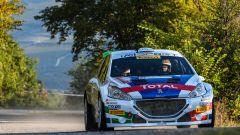 Peugeot conquista il Rally Due Valli 2018: ecco la gallery della festa - Immagine: 10