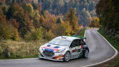 Peugeot conquista il Rally Due Valli 2018: ecco la gallery della festa - Immagine: 15