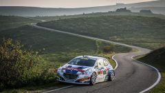 Peugeot conquista il Rally Due Valli 2018: ecco la gallery della festa - Immagine: 19