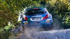 Peugeot conquista il Rally Due Valli 2018: ecco la gallery della festa - Immagine: 22