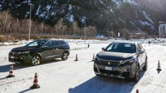 Peugeot Grip Control: muoversi in sicurezza sempre e ovunque - Immagine: 14