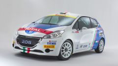 Peugeot Italia: i programmi sportivi 2016 - Immagine: 12