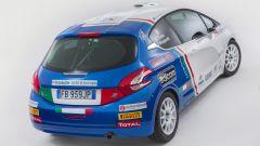 Peugeot Italia: i programmi sportivi 2016 - Immagine: 14