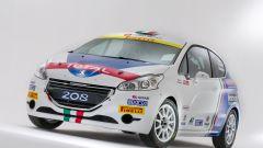 Peugeot Italia: i programmi sportivi 2016 - Immagine: 16