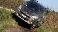 Peugeot Partner Dangel 4x4 - Immagine: 17