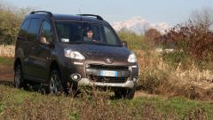 Peugeot Partner Dangel 4x4 - Immagine: 8