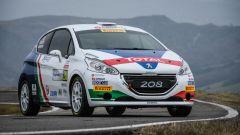 Peugeot Sport: la nuova sfida senza Andreucci, ecco Ciuffi-Gonella - Immagine: 1