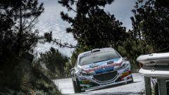Peugeot Sport Italia e Andreucci: i killer di Sanremo - Immagine: 2
