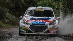 Peugeot Sport Italia e Andreucci: i killer di Sanremo - Immagine: 1
