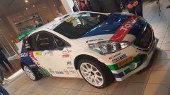 Paolo Andreucci alla caccia dell'11° Titolo con Peugeot Sport Italia