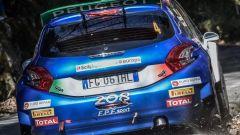 Peugeot Sport Italia - la Peugeot di Andreucci - Andreussi