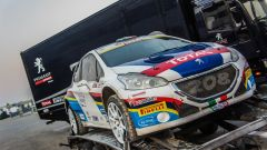 Andreucci e Peugeot: dal Rally Ciocco al Decimo titolo italiano Rally