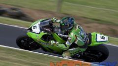 Philip Island test: Checa e Ducati da record - Immagine: 17