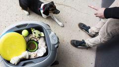 Piaggio Gita per i giocattoli del proprio cucciolo